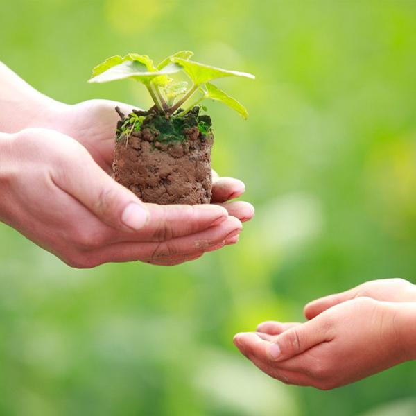 10 câu nói giúp người đời thấu hiểu nghĩa nhân sinh và sống an nhiên giữa đời