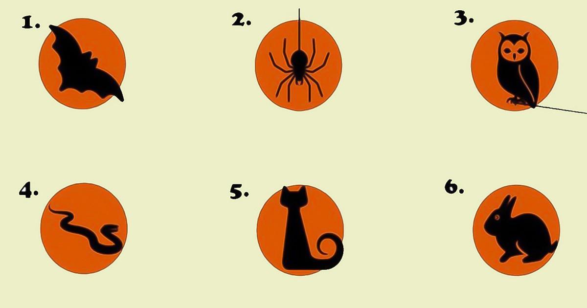 Trắc nghiệm: Chọn loài vật yêu thích và lắng nghe lời khuyên dành cho bạn ngay lúc này