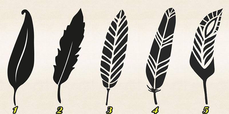 Chọn một chiếc lá để biết trong tương tai bạn sẽ làm lãnh đạo tối cao hay an phận nhân viên cả đời