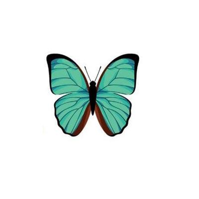 6. Con bướm số 6